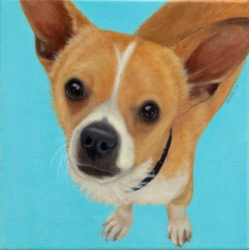 """Corky"", 12x12 oil by Dana Feagin, $695"