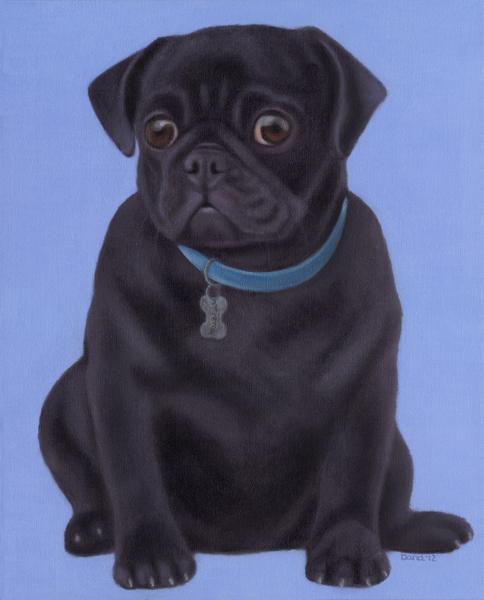 """""""Bubba"""", 20 x 16 oil by Dana Feagin, framed, $975"""