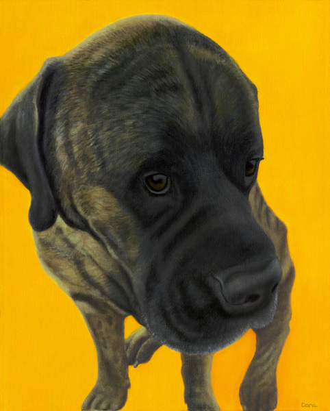 """It Wasn't Me"", 20 x 16 oil by Dana Feagin, framed, $975"