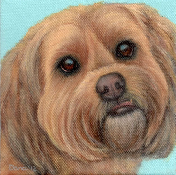 """Annie"", 8 x 8 oil by Dana Feagin, Commission"