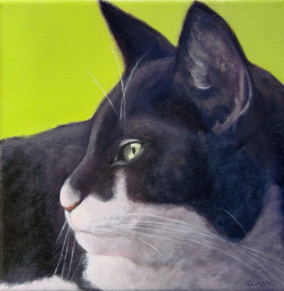 """Ellie's Cat"", 12 x 12 oil by Dana Feagin,  Sold"
