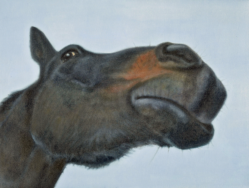 """Pete"", 14 x 18 oil by Dana Feagin, Sold"