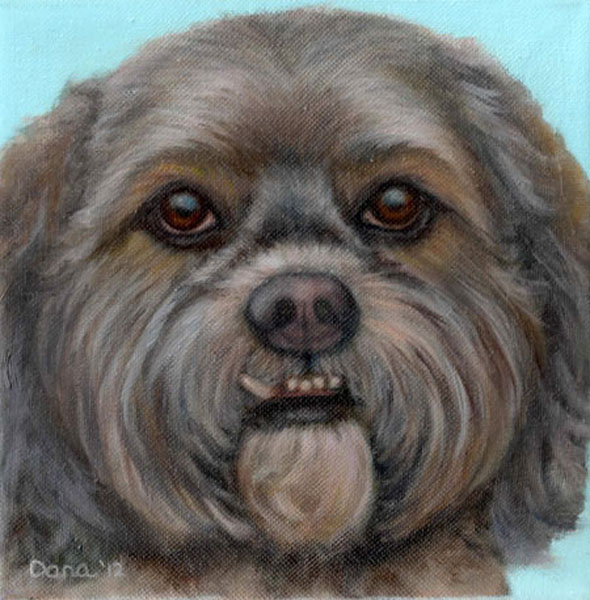 """Yogi"", 8 x 8 oil by Dana Feagin, Commission"