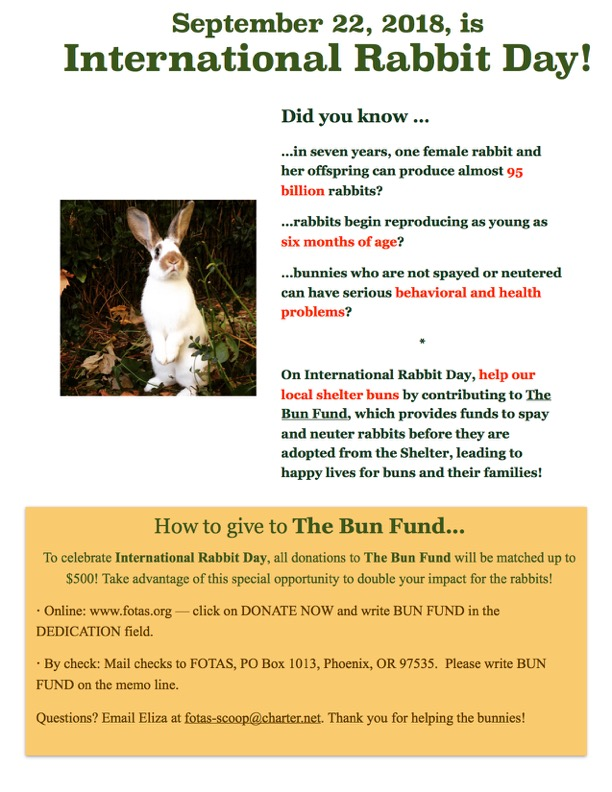 International Rabbit Day & Shelter Bunny Spay/Neuter Fund Donor